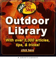 "Bass Pro Shops ""Library"" MySpace Ad 