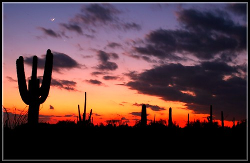 Amazing Arizona Sunset | by Amplified-Photography