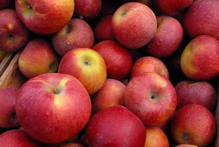 apples, farmers market, upper west side | by static-photo