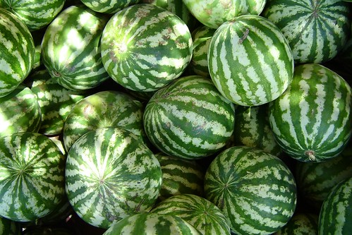 Watermelons | by S n o R k e l