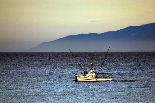 Santa cruz fishing entry into photofriday for real life for Santa cruz fishing report