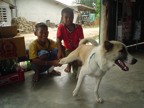 kids + dog = OMG~! | by Roy JH Tan