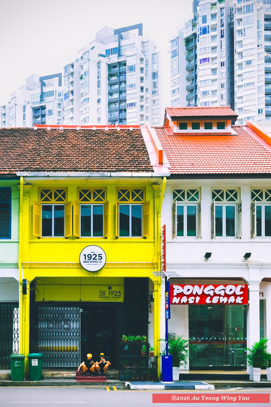 Singapore 2016: Life Among Historic Facades