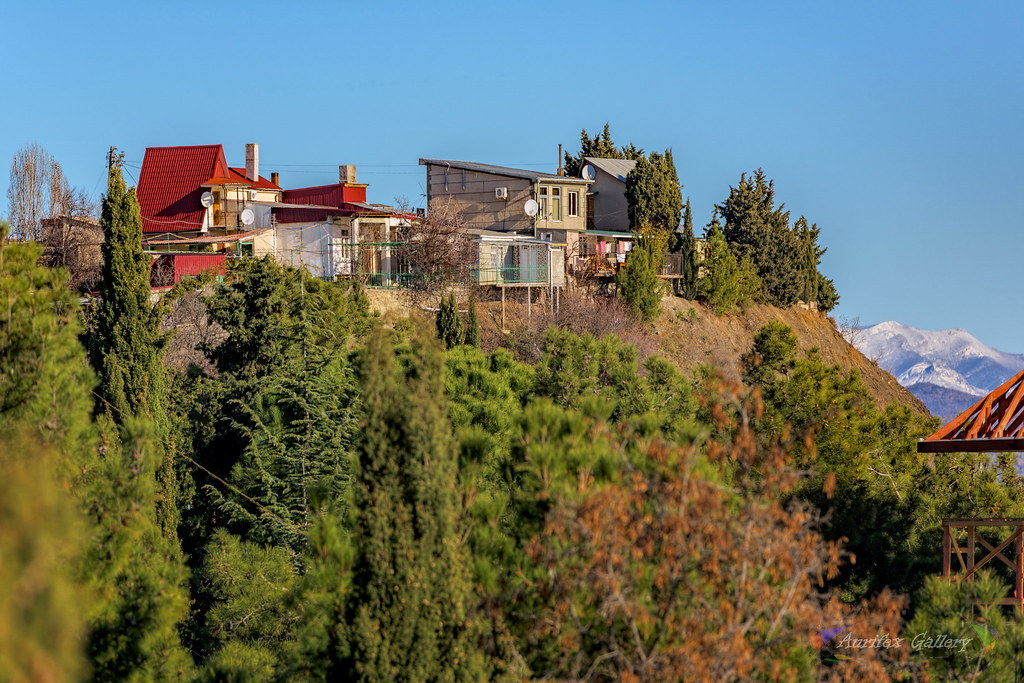 Life on the Hill near with Black sea