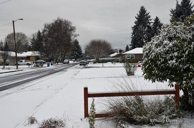 snow121516b