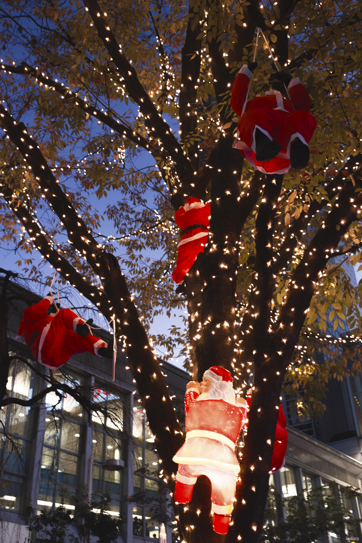 lavlilacs Japan Tokyo Shibuya Christmas decorations
