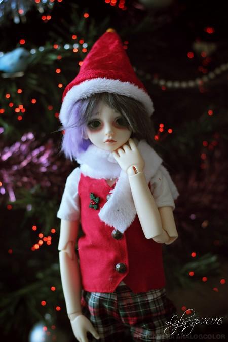 [ Shin - KDF Bory ] Cheshire chaton ? (23/12/2018) - Page 4 31847229135_c62ff86a70_b
