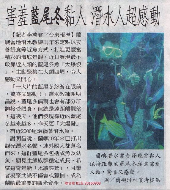 13結合報鼓勵蘭嶼潛水餵魚 誤導認知-20160908-縮