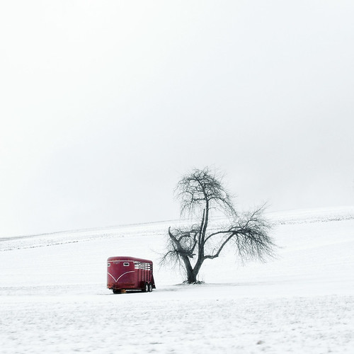 Horse Trailer | by eqqman