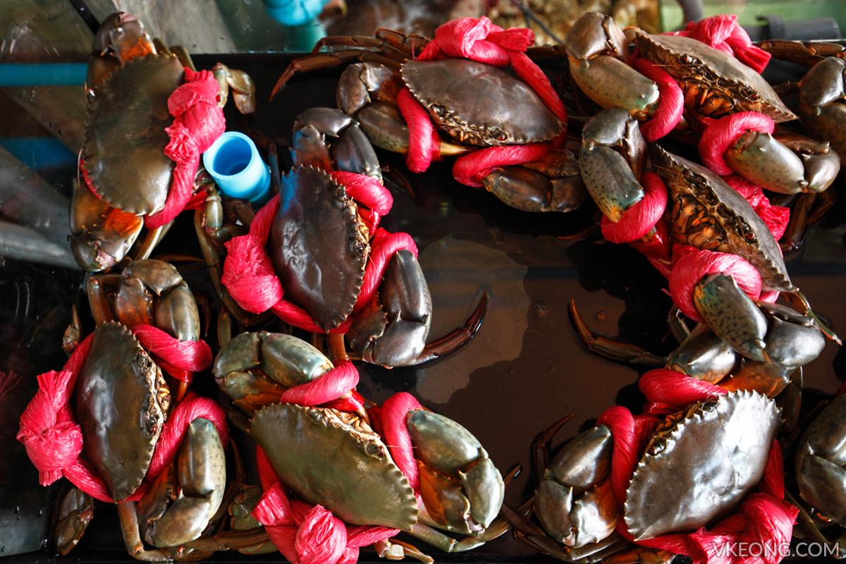 Pupen Seafood Mud Crab