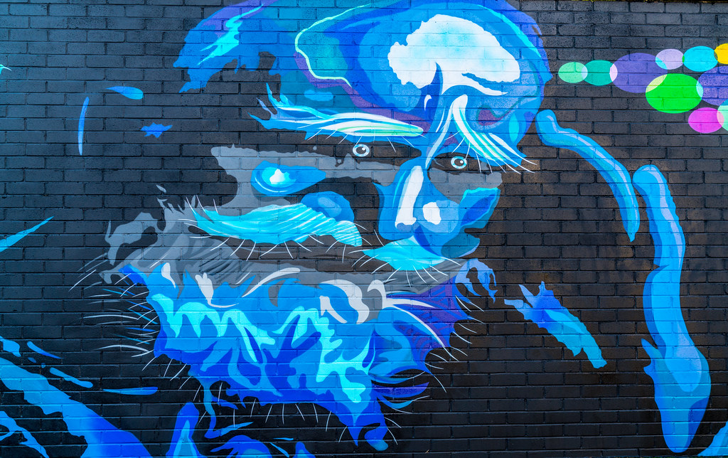 STREET ART ON SYNGE STREET [OFF THE SOUTH CIRCULAR ROAD]-124153