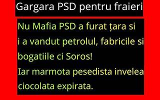 Logica cretinilor de voteaza mafia PSD-ista