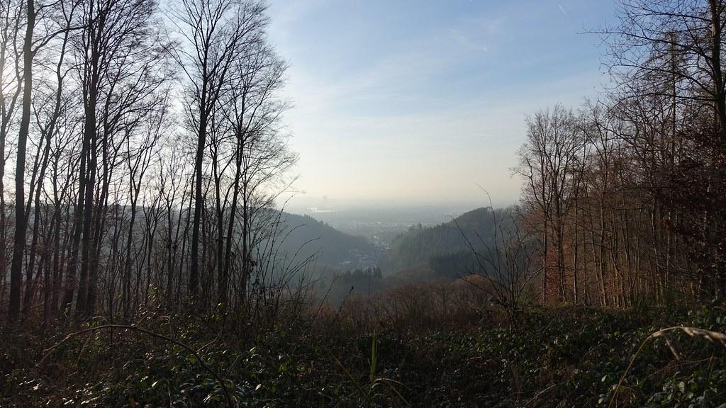 Blick auf den Rhein - Wandern auf dem Saynsteig