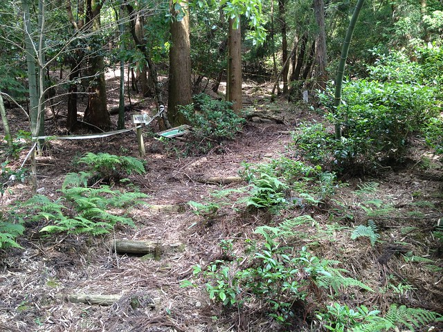 不破の滝 青羅公園 林間歩道