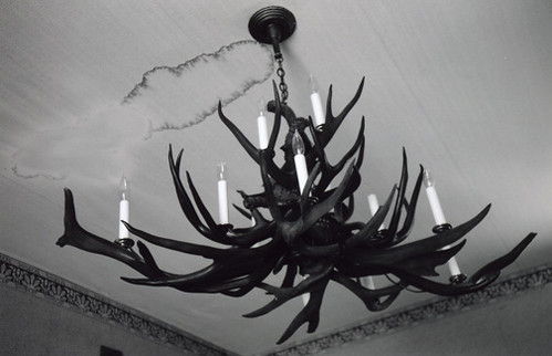 Antler chandelier | by Awesome Joolie