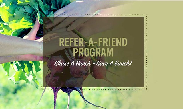 Refer-A-Friend Giveaway