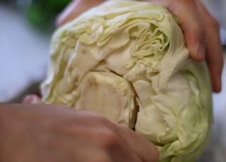 Cabbage Rolls 1.04