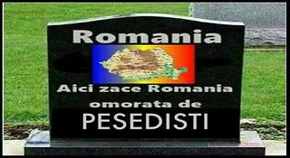 Romania, tara in care secaturile violente sunt protejate, nu izolate si pedepsite