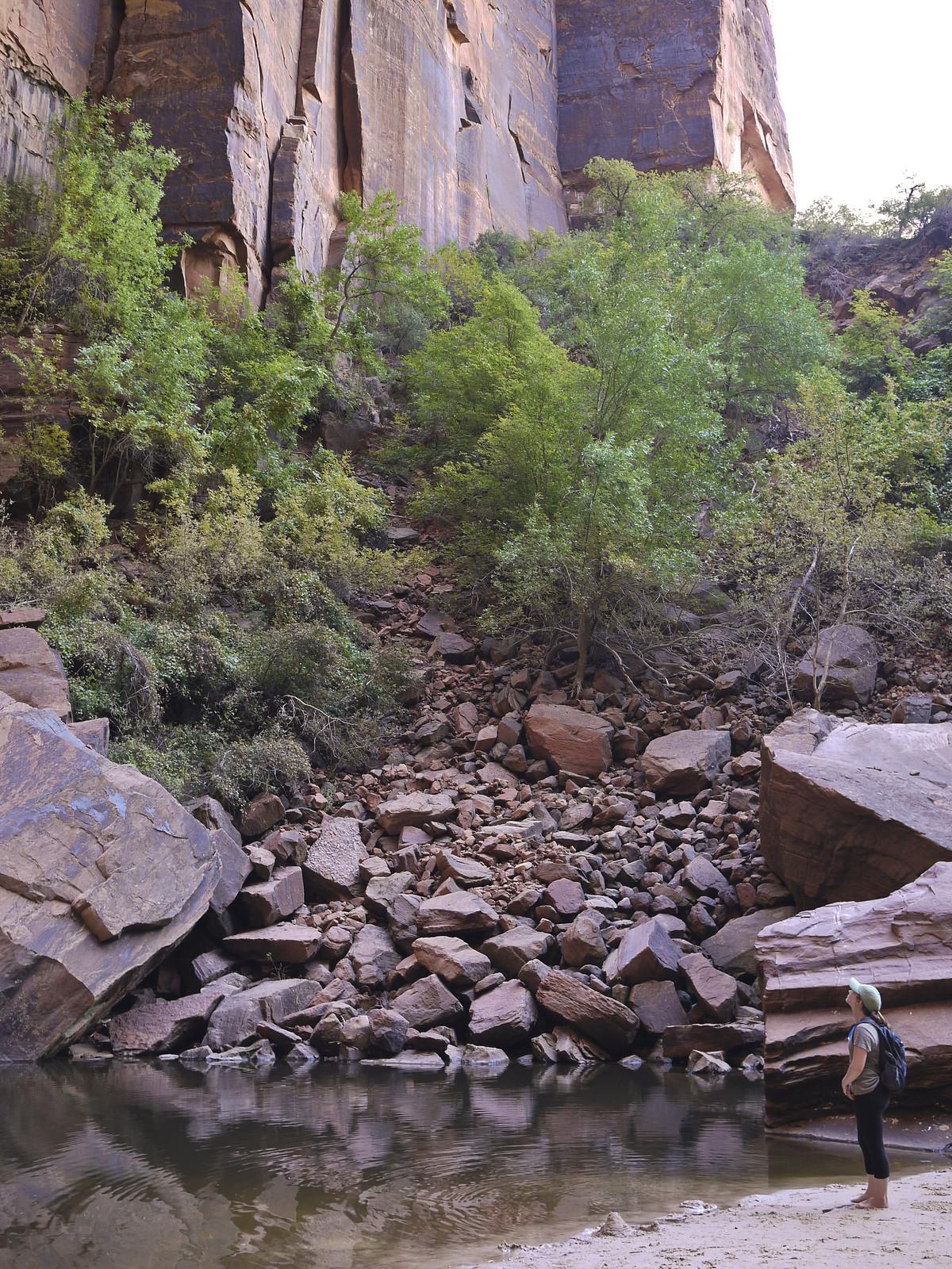 National Parks Trip 2016