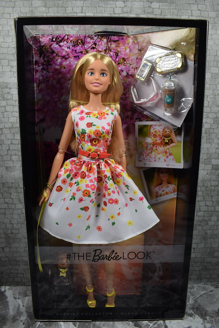 2016 Barbie The Look Park Pretty DVP55 (2)