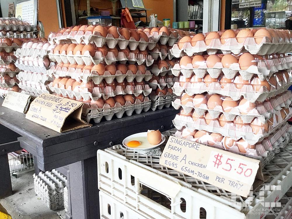 farm, farm tour, farmart centre, singapore, uncle william, where to go in singapore, 农市中心, 農市中心, review,farmart,local eggs