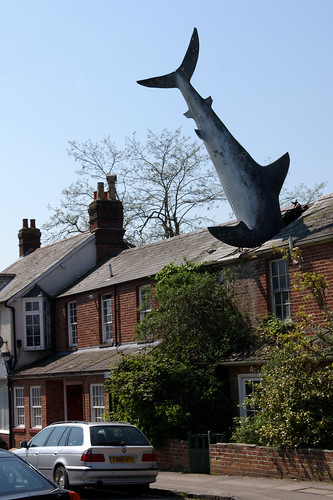 Yes - it's a shark in the roof. | by Daveybot