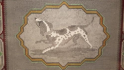 포르나세티 강아지