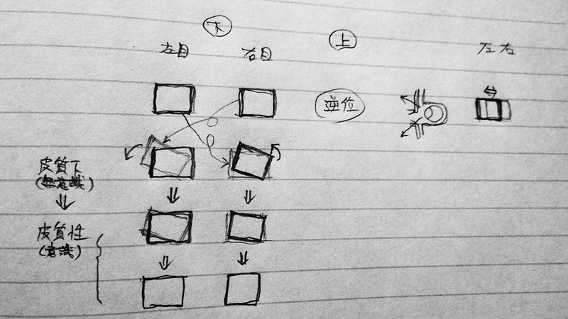 【視力回復の研究】目の前の映像が回転ずれを起こして複視状態になる現象【(仮)新・視力回復法】用ブログネタ