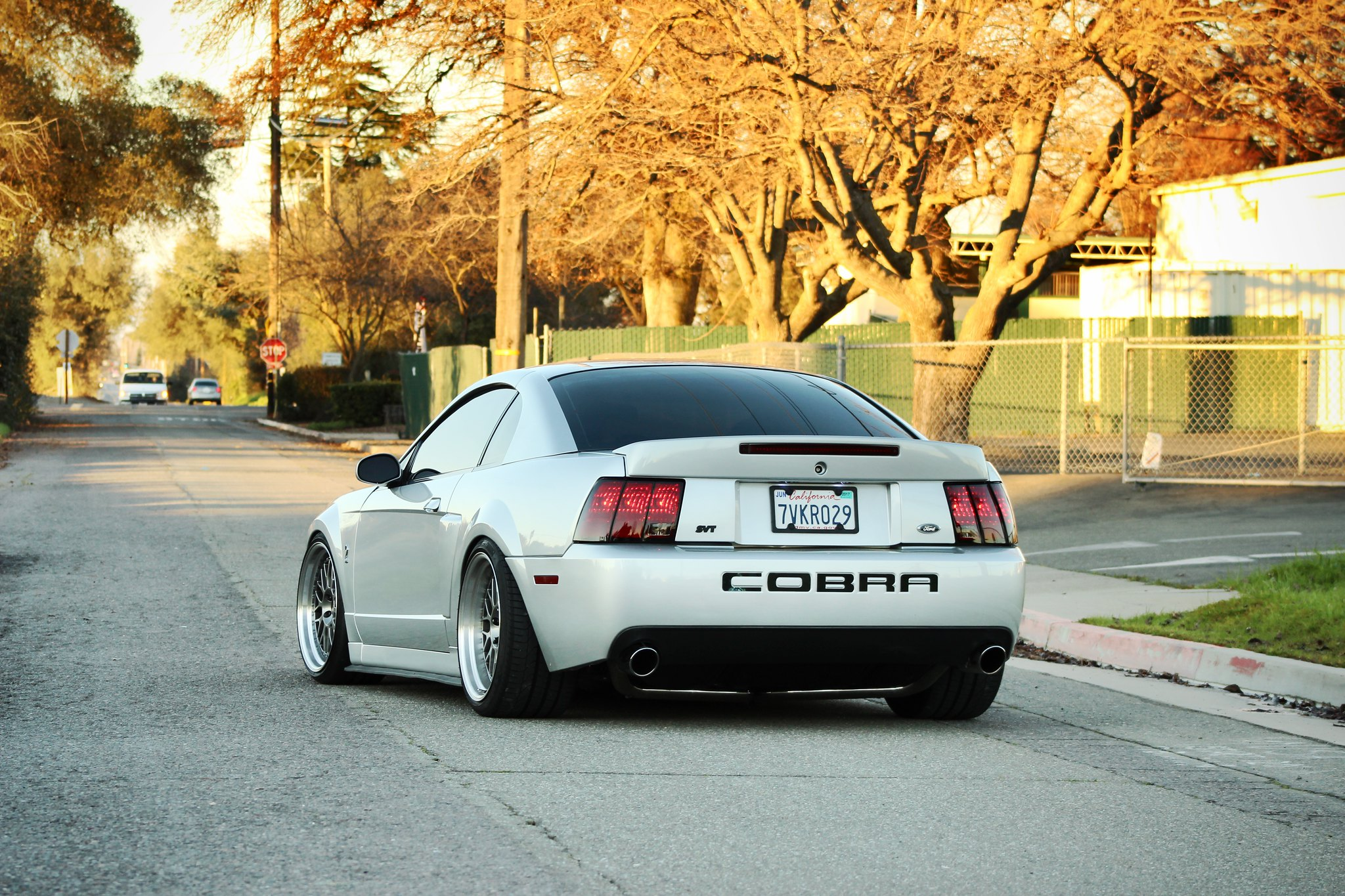 Slammed Cobra Pictures to Pin on Pinterest - PinsDaddy