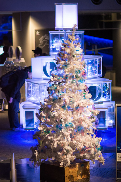 すみだ水族館内に飾られたクリスマスツリーの写真