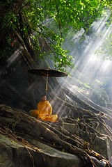 _DSC0582A - Thai Monk is in natural meditation | by hcchoo