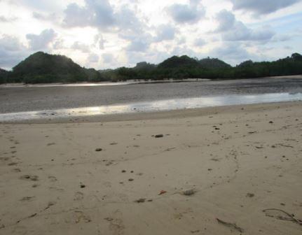 keadaan pantai clungup yang sedang surut