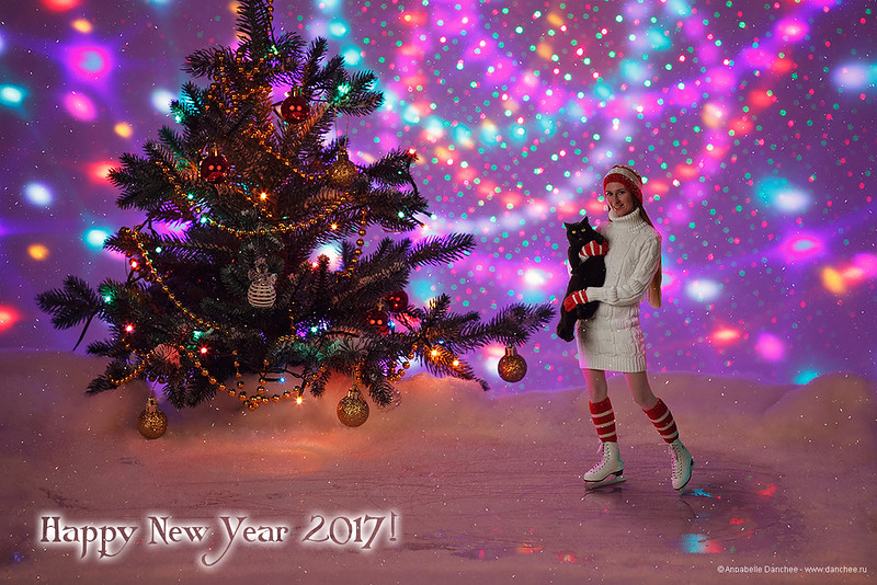 Happy New Year 2017 and Merry Christmas!