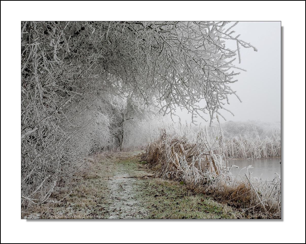 Vague de froid (2) 32098804095_9498f83da0_o