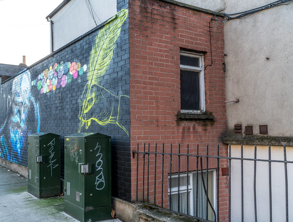 STREET ART ON SYNGE STREET [OFF THE SOUTH CIRCULAR ROAD]-124156