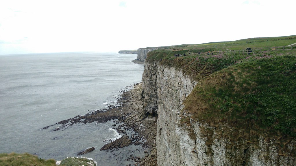 Bempton Cliffs in Yorkshire
