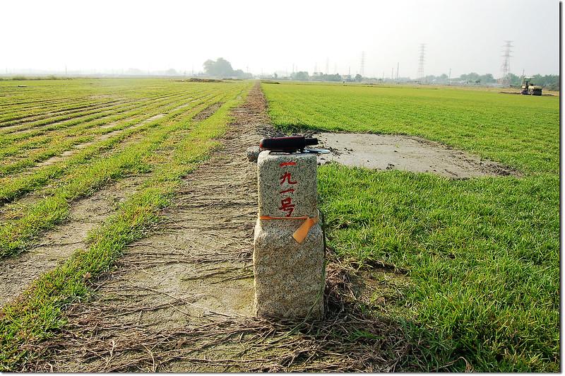 新莊子三等三角點(# 191 Elev. 27 m) 1