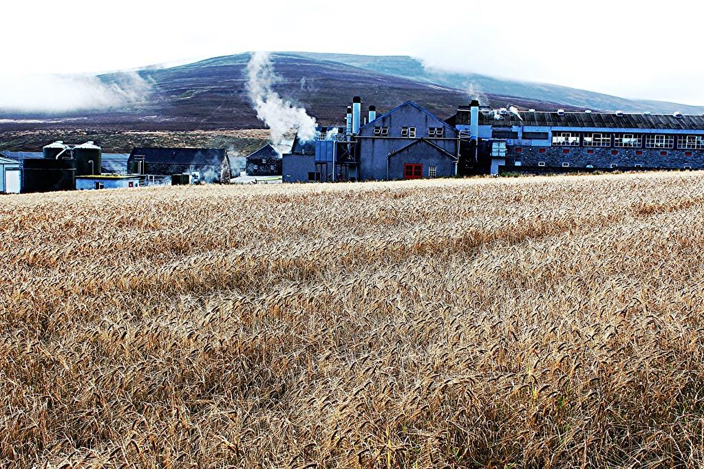 Landscape view of Glenfarclas Distillery, Speyside.