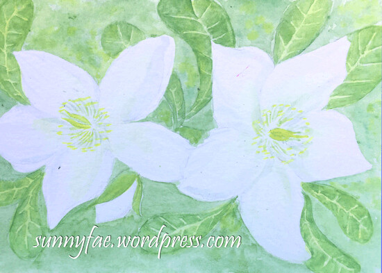 christmas-rose-watercolour-postcard