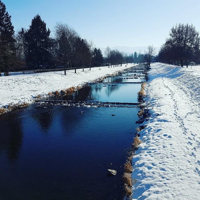 Dreisam #winter #freiburg #fotografie
