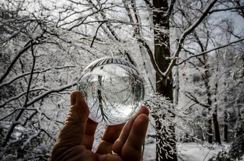 Snow Globe-001