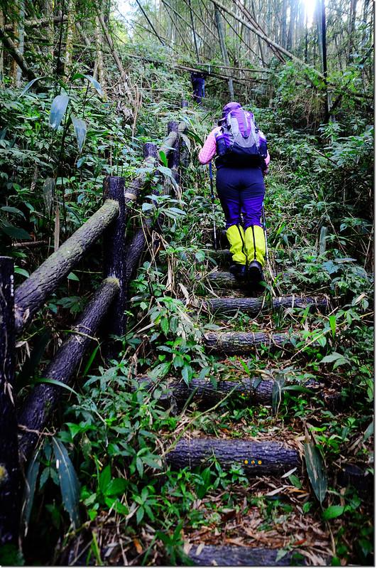 卓武山階梯步道