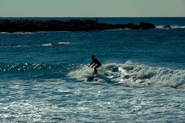 海辺のサーファー