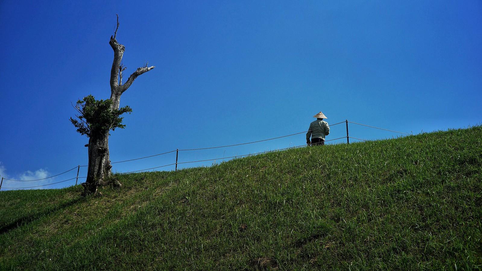 Nakagusuku Gardener #SonyA7 #Voigtlander40mm #japan15 #foto #Okinawa