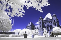 Queen's Park - Colour IR | by miwo76