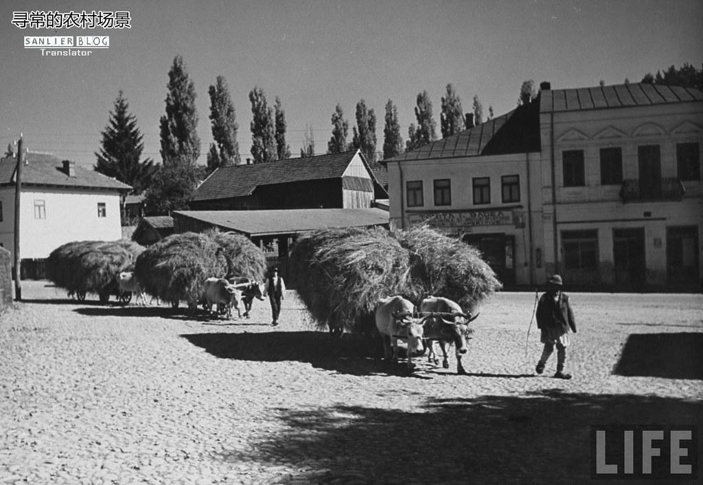 1938年罗马尼亚19