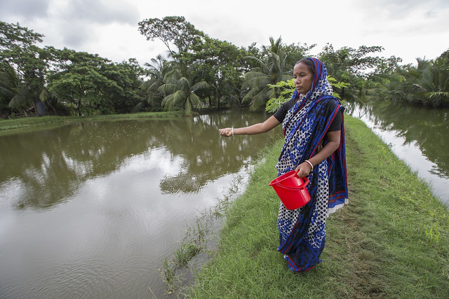 Woman feeding fish in Khulna, Bangladesh. Photo by Yousuf Tushar.