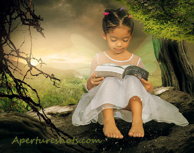 Reading book fairy