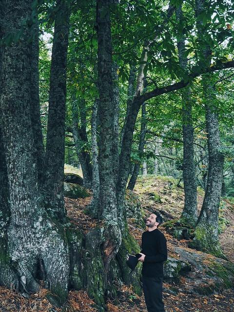 _ilcarritzi_nature_cabin_lakes_mountain_ocean_coss_store_