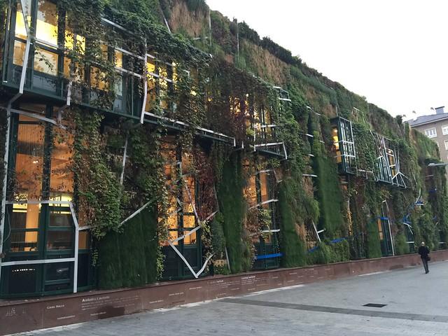 Fachada vegetal Palacio de Congresos Europa en Vitoria Gasteiz
